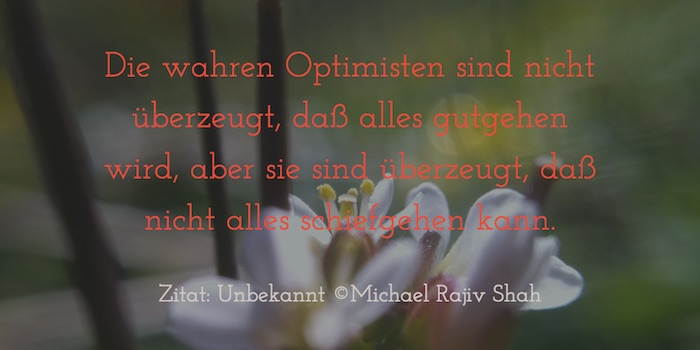 Zitate_Optimisten